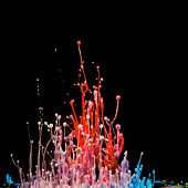 Explosion of splashes and bursts of color fluid paint   ink on  black background. abstract sculpture poster