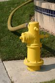 a fire hydrant being used and hooked to a fire hose