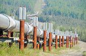 Oleoduto trans-Alasca