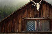 Backwoods America