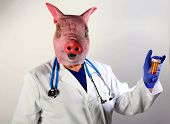 A Doctor in a Pig Mask holds a bottle of pills representing the Mexican Swine Flu Pandemic