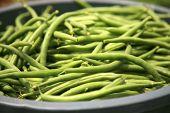 stock photo of sweetpea  - string beans fresh harvested - JPG