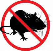 The Prohibition Sign Of The Rat.  Fine Art poster