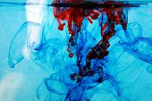 red and blue food coloring floats freely in a tank of clean clear water in a psychedelic pattern tha