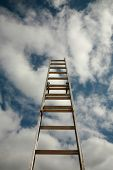 picture of reach the stars  - ladder to success - JPG