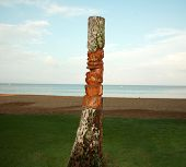 an ancient deity of Hawaiian residents carved out of an old palm tree trunk also known as a Tiki God