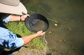 gold panning, man striking it rich by finding the mother lode or at least a nugget or two