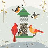 Cute Birds Poster. Red Northern Cardinal, Chickadee Robin Comic Cartoon. Minimalism Simplicity Desig poster