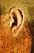 Illustrative image manipulation of an ear.