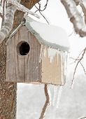A bird house after an ice storm with icicles hanging off its roof, with a snowstorm blowing snow on