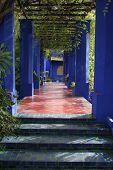 Jardine Majorelle in Marrakesh, Morocco, Africa
