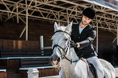 Handsome Male Equestrian Riding And Palming Horse At Horse Club poster