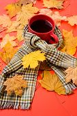 Hot Drink For Autumnal Walk. Warming Beverage. Mug Of Tea Surrounded By Scarf Red Background With Fa poster