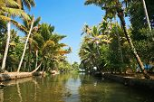 journey through the backwaters of Kerela, India