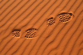 stock photo of barchan  - Human footsteps in the sand in the Sahara Desert - JPG