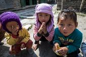 Sherpa Children Play In Their Village