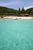 Tropical Isand From Water