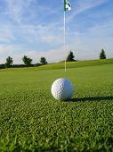 Golf Ball On Course Portrait