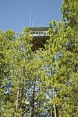 Gentry Fire Lookout Tower