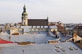 View Over The Rooftops Of The Old City Of Lvov