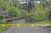 stock photo of voltage  - Storm broken oak tree fallen down across a wet neighborhood road with yellow police tape in the foreground warning of high voltage wires down - JPG