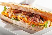 Sandwich with Chicken and Bacon Garnished with Fries and Sauce