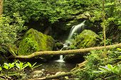 pic of grotto  - Grotto Falls in Great Smoky Mountain National Park Tennessee USA - JPG