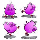 Pig On Roller Skates