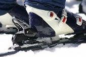 Ski Shoe