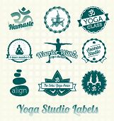 stock photo of chiropractic  - Collection of retro style yoga studio labels and icons - JPG