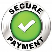 image of security  - Vector illustration of label for secure payment - JPG