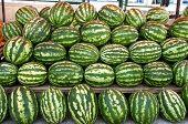 Organic Ripe Watermelon Heap