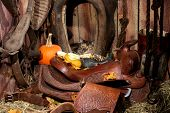 image of western saddle  - Cute, multi-colored farm cat hiding behind an old horse collar in an