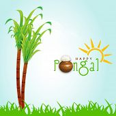 Happy Pongal, harvest festival celebration in South India with sugarcane and stylish text on nature background.