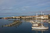 view marina of ponta delgada, Sao Miguel Island