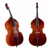 picture of double-bass  - Contrabass - JPG