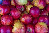 Rubin Sorte Äpfel liegen in einer Truhe auf einem Markt für Obst und Gemüse.