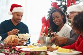 picture of christmas meal  - Multi Generation Family Enjoying Christmas Meal At Home - JPG