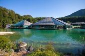 foto of bull head  - Red Bull Head Quarter Fuschl Am See Austria - JPG