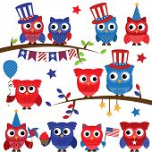 Set of Vector Fourth of July or Patriotic Owls and Branches