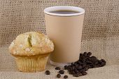 Coffee and lemon poppy seed  muffin