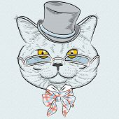Vector Closeup Portrait Of The British Cat Hipster