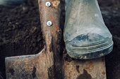 Man Digs On Garden