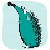 Sad Hedgehog