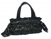 Black and sequin leather lady bag isolated on the white background