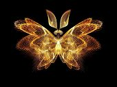 Butterfly Abstraction