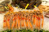 stock photo of norway lobster  - Lobsters prawns and shrimp crustaceans on crushed ice - JPG