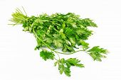 stock photo of chinese parsley  - Bunch of parsley on a white background - JPG