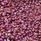 Red Onions As A Background