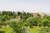 Alhambra Palace And View Of Granada City, Spain